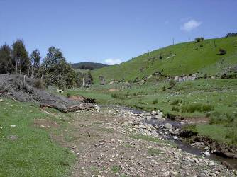 Site of possible dam in Upper Motupiko