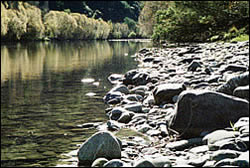 Clear waters of Motueka River