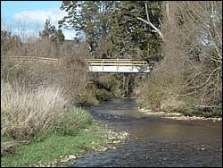 Bridge over the Sherry River at Bavin's place
